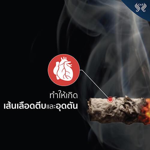 สูบบุหรี่ทำให้หัวล้าน ผมร่วง ผมบาง หัวล้าน บุหรี่ สูบบุหรี่ -2